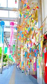丸の内商店街の笹飾り