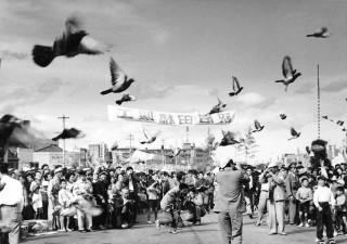 大空に放たれた鳩で竣工を祝う市民ら(昭和35年撮影)