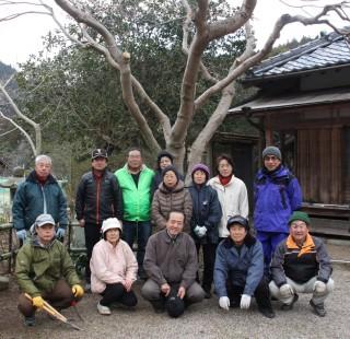 春に花を咲かせる五色椿の木(奥)と、会員たち…浄得寺で