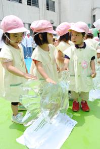 氷のエンゼルフィッシュに触れる大川幼稚園の園児たち