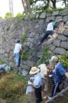 石垣の草を取る参加者たち
