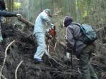 倒木を切り登山道を整備