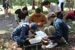 落ち葉や土に潜む生物を観察する参加者たち