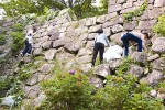石垣に登って草を抜く参加者たち