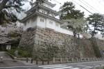 県指定史跡の「津城跡」
