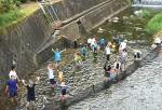 昨年の川魚つかみの様子