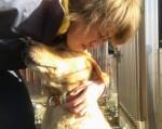 動物愛護のための寄付を行っている久世さん