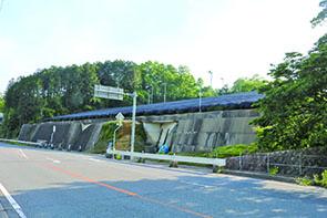 道の駅「お茶の京都 みなみやましろ村」向かいの茶畑