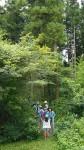 年の「こども森の写真教室」で、森を散策する参加者