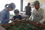 蚕の幼虫を手にのせて観察する子供(中央)