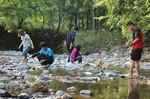 川遊びで美杉町の魅力を体感する学生たち