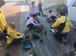 プランターに寄せ植えを行う津商工会議所青年部と女性会の会員たち