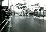 昭和59年ごろの旧国道165号の一本松(津市HPより)