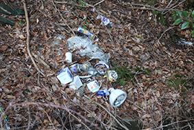 山林に投げ捨てられたゴミ