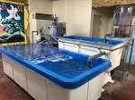 「好気的脱窒装置を取入れた完全閉鎖型水産システム」 (どんぐりの会が鳥羽市の水産漁業事業所での試験に使用したもの)