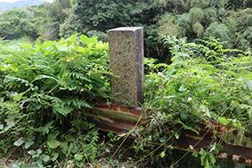 ガードレールと草に埋もれる本居宣長の歌碑